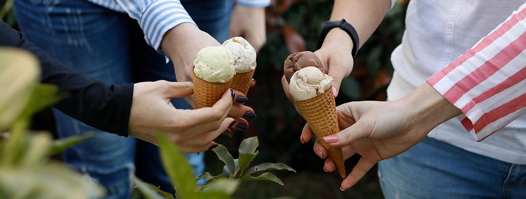 catering ve etkinlik dondurma